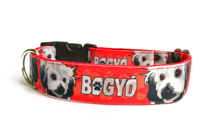 http://www.egyedinyakorv.hu/files/image/referenciak2/unique_dog_collar_with_name_and_face.png